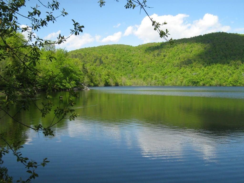 Pique-nique au Lac Hertel